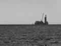 Seehundbank-198