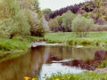 Sohland - Talsperre - Sachsen - Canon EOS 300 - Kleinbild (4)