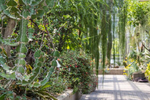 Botanischer Garten Bochum-116