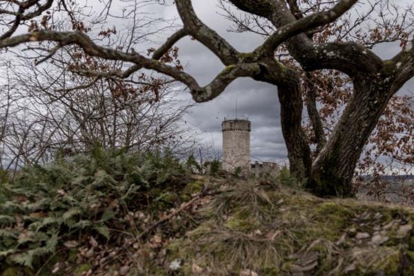Burg Pyrmont (4)
