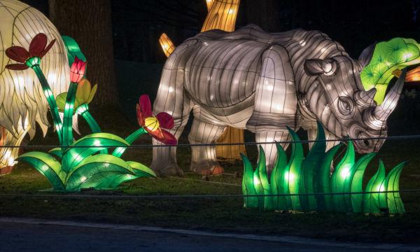 Münster_Chinesische Lichter
